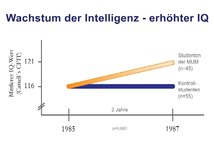 Erhöhter IQ